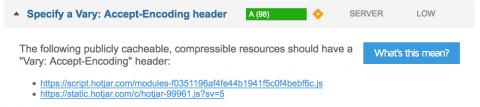 Specify vary accept encoding header