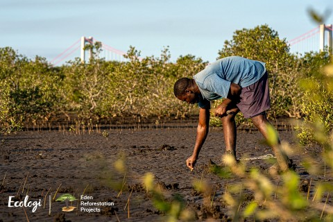 Ecologi Eden Reforestation Tree Planting Projects